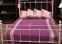 Mattress collection available now  by Shambala Furniture Warehouse