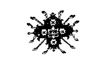 Shah Carpet Palace Logo
