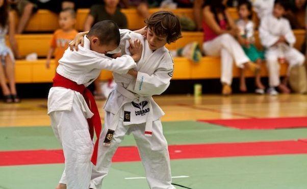 DB Cobras Judo Club photo 5