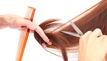 Charles-Hairexpat Logo