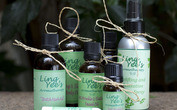Ling Yee's Aromatherapy photo