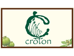 Croton Consultant Limited logo