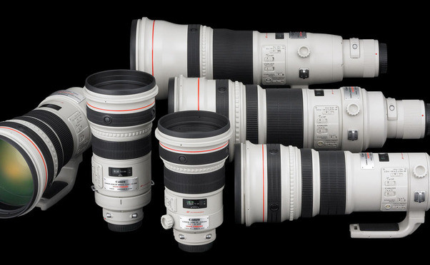 The Lens Room photo 4