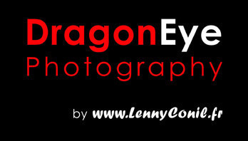 Dragon Eye Photography Logo