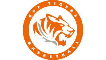 ESF Tigers Basketball Logo