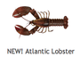 Atlantic Lobster by Wild C Limited