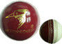 New arrival of red/white cricket training balls! Available in 135g, 142g & 156g.