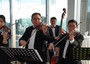 String Quartet for Weddings and High Society Functions.