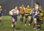 Phoenix, Marines and Sharks will all be playing in GRAND CHAMPIONSHIP Finals at King's Park  - a ...